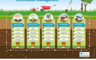 5 Steps to Intelligent Information Management (IIM)
