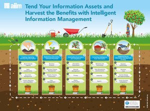 The Intelligent Information Management Journey Map